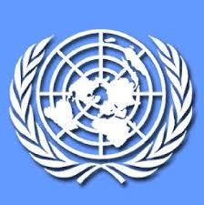 La ONU convocará a una reunión para analizar los alcances de la crisis
