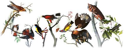 226º Aniversario del nacimiento de John James Audubon